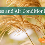 allergies and air conditioning