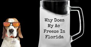 Why Is My Air Conditioner Freezing Up In Florida?
