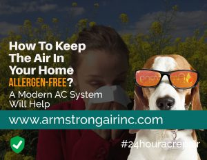 How To Keep The Air In Your Home Allergen-Free?